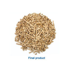 biomass pelletizing plant