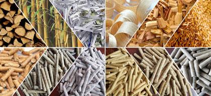 Sawdust pellet press